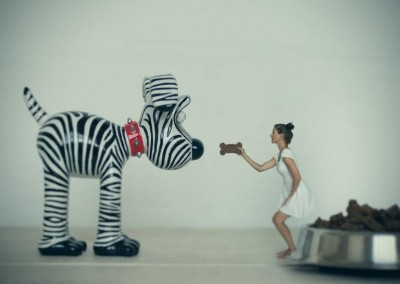 Feeding Gromit part of personal fine art photo project by Abigail K Photography